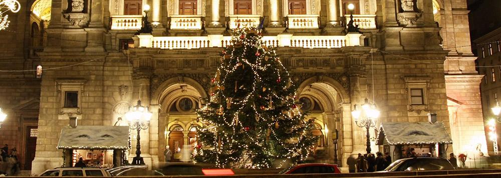 Рождественские елки в Венгрии